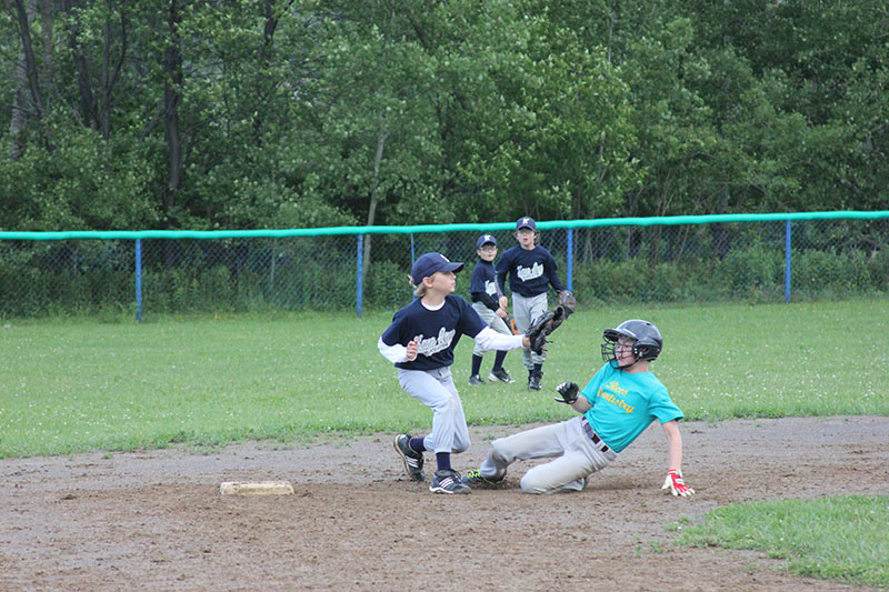 little league pic